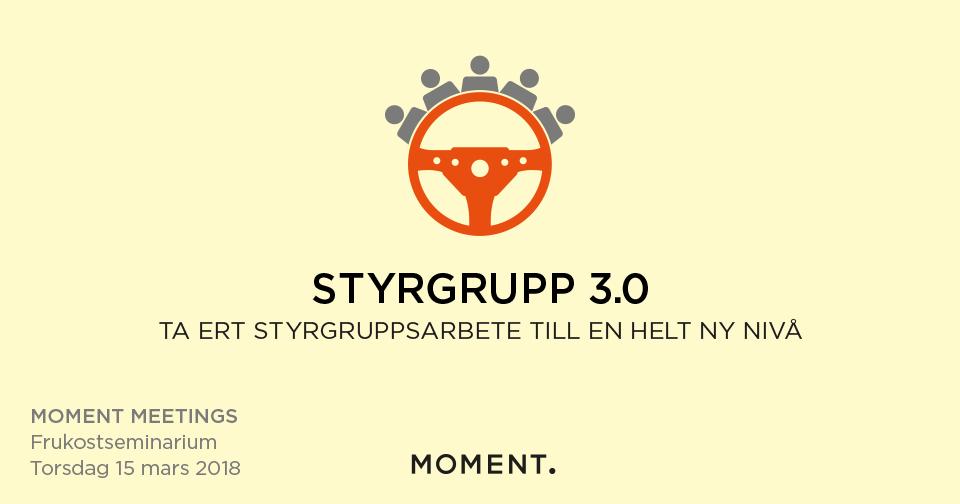 Styrgrupp 3.0