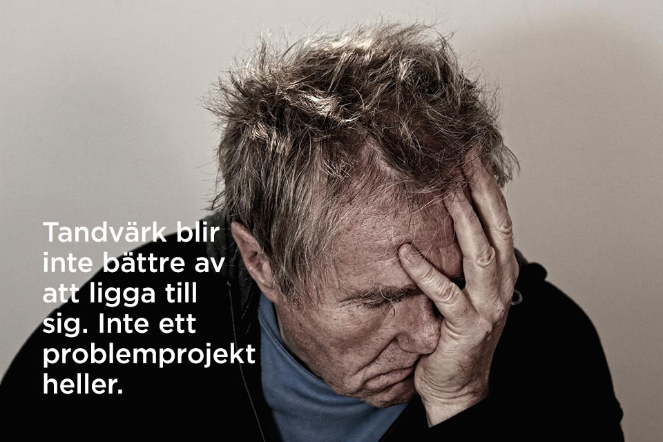 projektgranskning